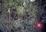 Image of Operation Cedar Falls Vietnam, 1967, second 7 stock footage video 65675024058