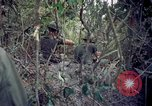 Image of Operation Cedar Falls Vietnam, 1967, second 9 stock footage video 65675024058