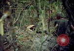 Image of Operation Cedar Falls Vietnam, 1967, second 11 stock footage video 65675024058