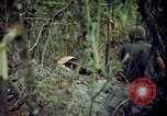Image of Operation Cedar Falls Vietnam, 1967, second 12 stock footage video 65675024058
