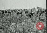 Image of Battle of Arras France, 1917, second 5 stock footage video 65675024073