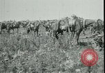 Image of Battle of Arras France, 1917, second 6 stock footage video 65675024073