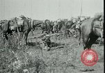 Image of Battle of Arras France, 1917, second 11 stock footage video 65675024073