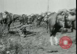 Image of Battle of Arras France, 1917, second 12 stock footage video 65675024073