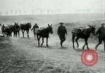 Image of Battle of Arras France, 1917, second 9 stock footage video 65675024078