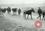Image of Battle of Arras France, 1917, second 11 stock footage video 65675024078