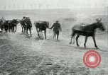 Image of Battle of Arras France, 1917, second 12 stock footage video 65675024078