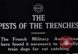 Image of Dog Training France, 1917, second 2 stock footage video 65675024165