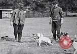Image of Dog Training France, 1917, second 7 stock footage video 65675024165