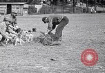 Image of Dog Training France, 1917, second 12 stock footage video 65675024165