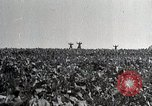 Image of German soldiers surrendering as U.S. Army advances through Belgium France, 1944, second 3 stock footage video 65675024438