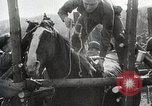 Image of US troops put on a rodeo in Germany Germany, 1944, second 9 stock footage video 65675024450