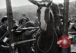 Image of US troops put on a rodeo in Germany Germany, 1944, second 11 stock footage video 65675024450