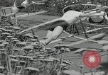Image of Gymnastics in 1936 Olympic games Berlin Germany, 1936, second 9 stock footage video 65675024479