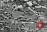 Image of Gymnastics in 1936 Olympic games Berlin Germany, 1936, second 11 stock footage video 65675024479