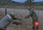 Image of barracks under construction Vietnam, 1965, second 7 stock footage video 65675024800