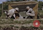 Image of pillbox Japan, 1945, second 11 stock footage video 65675024869