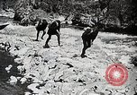 Image of long boats navigate rapids Japan, 1898, second 10 stock footage video 65675024930