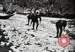 Image of long boats navigate rapids Japan, 1898, second 12 stock footage video 65675024930
