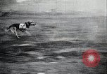 Image of Japanese troops Japan, 1933, second 8 stock footage video 65675025046