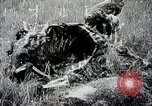 Image of Japanese expedition China, 1936, second 10 stock footage video 65675025052