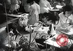 Image of educational system Japan, 1945, second 2 stock footage video 65675025080