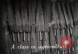 Image of educational system Japan, 1945, second 2 stock footage video 65675025085