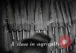 Image of educational system Japan, 1945, second 4 stock footage video 65675025085