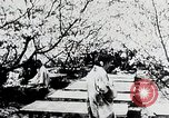 Image of Three zones of forests in Japan Japan, 1938, second 7 stock footage video 65675025095