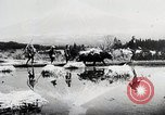 Image of Food production in Japan Japan, 1938, second 2 stock footage video 65675025096