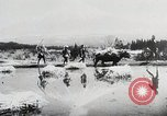 Image of Food production in Japan Japan, 1938, second 3 stock footage video 65675025096