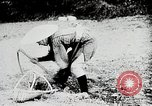 Image of Food production in Japan Japan, 1938, second 10 stock footage video 65675025096