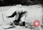Image of Food production in Japan Japan, 1938, second 11 stock footage video 65675025096