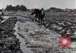 Image of Rice Field Leveling Japan, 1934, second 10 stock footage video 65675025113