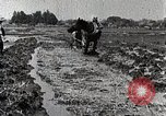 Image of Rice Field Leveling Japan, 1934, second 11 stock footage video 65675025113