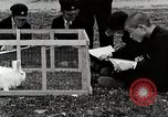 Image of Art Class At Hirosaki Boys' School Honshu Japan, 1935, second 11 stock footage video 65675025144