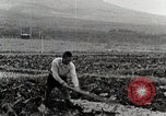 Image of Farm Scene Japan, 1935, second 6 stock footage video 65675025146