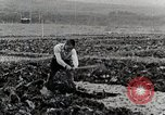 Image of Farm Scene Japan, 1935, second 9 stock footage video 65675025146