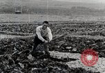 Image of Farm Scene Japan, 1935, second 10 stock footage video 65675025146