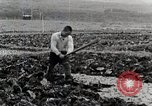 Image of Farm Scene Japan, 1935, second 11 stock footage video 65675025146