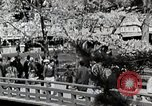 Image of Spring Season Japan, 1935, second 6 stock footage video 65675025155