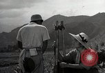 Image of Japanese men discuss 4H club project Japan, 1950, second 11 stock footage video 65675025230