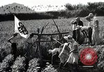 Image of 4H Club Helps with a Irrigation Project Japan, 1950, second 7 stock footage video 65675025231
