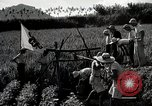Image of 4H Club Helps with a Irrigation Project Japan, 1950, second 9 stock footage video 65675025231