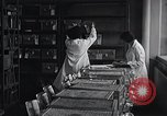 Image of Women in American work force New York United States USA, 1950, second 11 stock footage video 65675025251