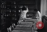 Image of Women in American work force New York United States USA, 1950, second 12 stock footage video 65675025251