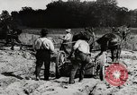 Image of Men and machines building a concrete highway United States USA, 1920, second 6 stock footage video 65675025339