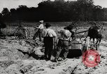 Image of Men and machines building a concrete highway United States, 1920, second 7 stock footage video 65675025339