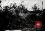 Image of Battle for Peleliu Peleliu Palau Islands, 1944, second 11 stock footage video 65675025365
