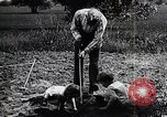 Image of Henry Ford with grandsons United States USA, 1924, second 3 stock footage video 65675025376